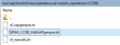 OS Level folder structure for the SAP Host Agent